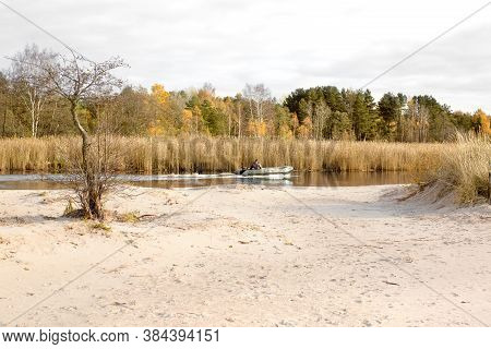 View From The Sandy Bank Of The River To The Reed Thickets And Autumn Forest