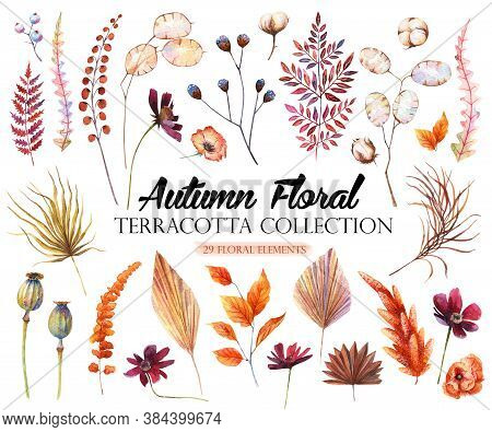 Watercolor autumn clipart Wildflower clipart Palm leaf