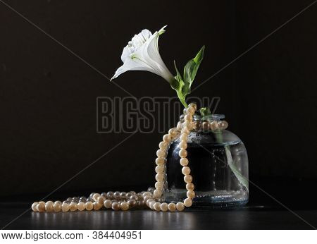 Retro Style Still Life With Alstroemeria Flower In The Small Vintage Bottle And String Of Pearls  Ag
