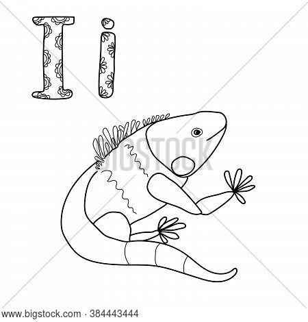 Coloring Page For Study Letter I, Outline Illustration  Of Iguana And Volumetric Letters With Patter