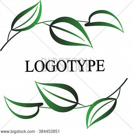 Leaf Logo Vector. Leaves Logo. Nature Leaf Logo. Eco Leaf Logo. Leaf Sign. Leaf Symbol. Leaf Logo Ve