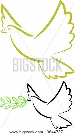 a dove with an olive branch in its beak - peace and love poster