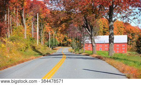 Colorful autumn trees by asphalt road in rural Vermont