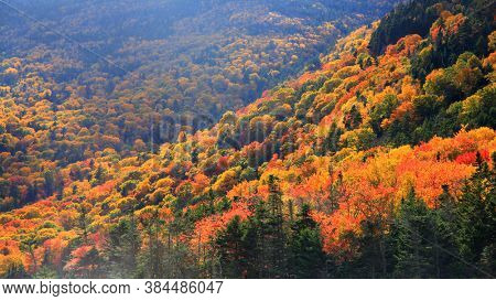 Colorful fall foliage in rural New Hampshire