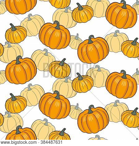 Colorful Orange Pumpkins On A White Background With Pale Pumpkins. Vector Seamless Pattern For Wrapp