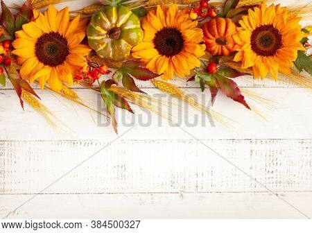 Concept of fall harvest or Thanksgiving day. Autumn composition with pumpkins,wheat ears and  sunflowers on white wooden table. Flat lay, copy space