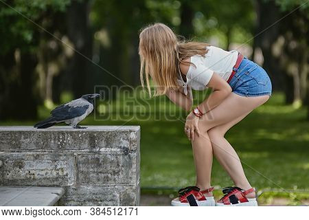 Young Woman Is Talking With Crow In The Public Park. Girl In Denim Shorts Crouched In Front A Brave