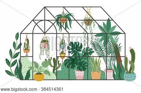 Planting Greenhouse. Glass Orangery, Botanical Garden Greenhouse, Flowers And Potted Plants Home Gar