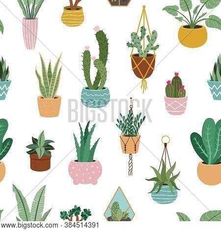Home Plants Pattern. Seamless Flower Potted Plant, Decorative Botanical Indoor Houseplant, Home Pott