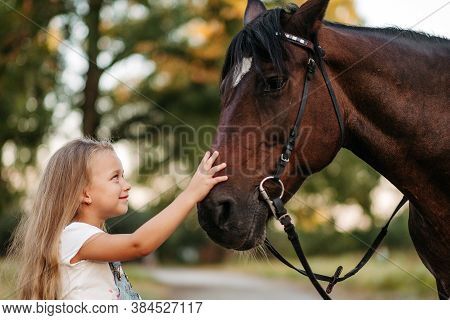 Friendship Of A Child With A Horse. A Little Girl Is Affectionately Stroking Her Horse. Walking Girl