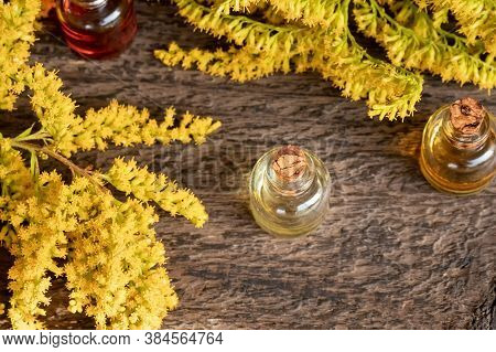 Bottles Of Essential Oil With Blooming Canadian Goldenrod, Or Solidago Canadensis Plant