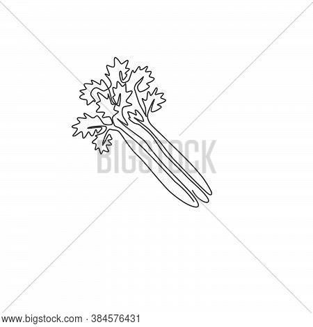 Single Continuous Line Drawing Of Bunch Healthy Organic Green Celery For Farm Logo Identity. Fresh M