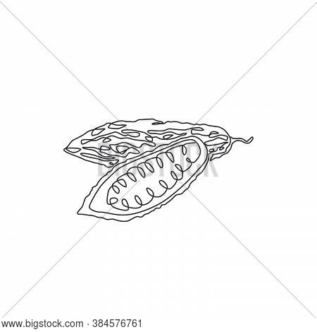 Single Continuous Line Drawing Of Whole And Sliced Healthy Organic Bitter Gourd For Garden Logo Iden
