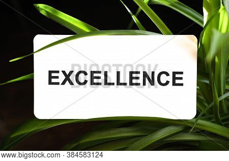 Excellence Text On White Surrounded By Green Leaves