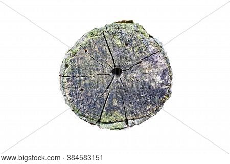 Old Wooden Stump Isolated On The White Background.
