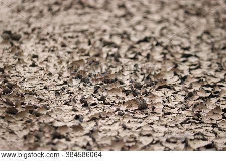 Dried Slush. Texture Cracked Dirt. Selective Focus. Macro.