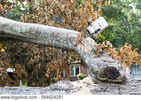 While Removing A Tree That Fell From Hurricaine Isaias I Chainsaw Is Stuck In The Tree As The Branch