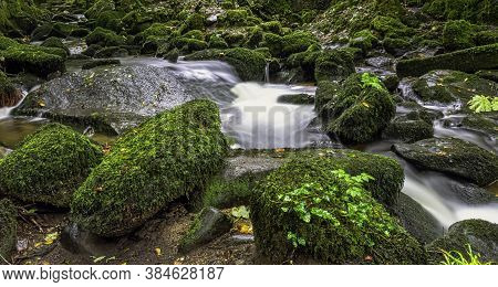 Kennall River In Kennall Vale Nature Reserve, Ponsanooth, Cornwall, United Kingdom