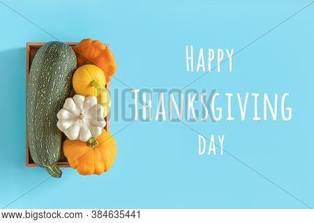 Happy Thanksgiving Day Text And Harvest Colored Different Vegetables Gourds Pumpkin, Zucchini, Squas