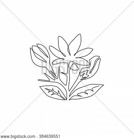 One Single Line Drawing Of Beauty Fresh Evergreen Jasmine Flower For Garden Logo. Printable Decorati