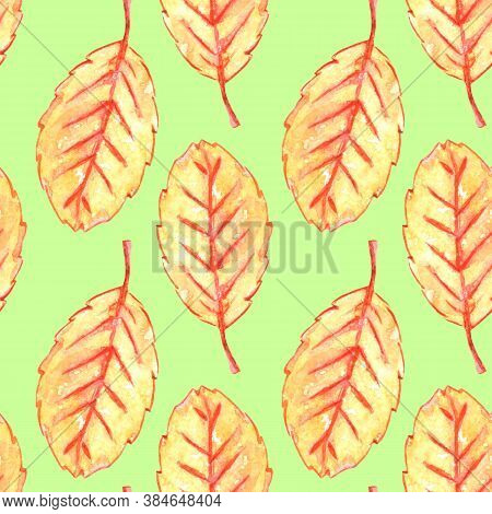 Watercolor Aspen Leaves Seamless Pattern. Colorful Autumn Background And Texture For Seasonal Design