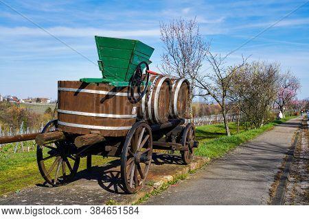 Rhodt Unter Rietburg, Germany - Mar 15, 2020: Almond Trees, Prunus Dulcis Blooming, Southern Wine St