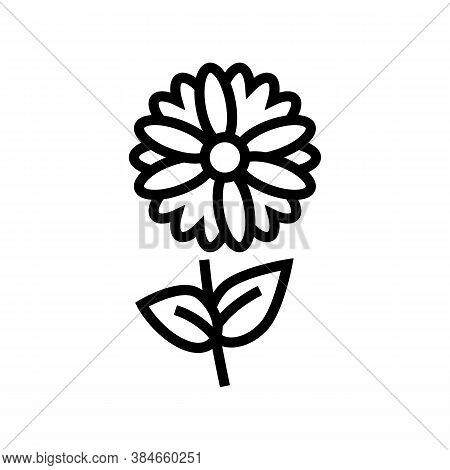 Chamomile Flower Aromatherapy Line Icon Vector. Chamomile Flower Aromatherapy Sign. Isolated Contour