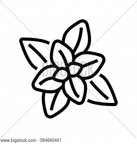 Peppermint Aromatherapy Line Icon Vector. Peppermint Aromatherapy Sign. Isolated Contour Symbol Blac
