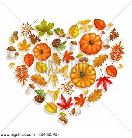 Fall Banner With Autumn Foliage Maple, Oak, Elm, Pumpkin, Chestnut, Leaves Rhus Typhina, Mushrooms A