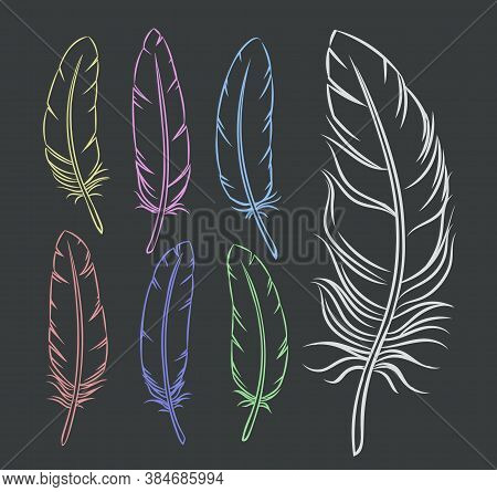 Hand Drawn Feathers Set. Monochrome Engraved Bird Feather Vector Illustration.
