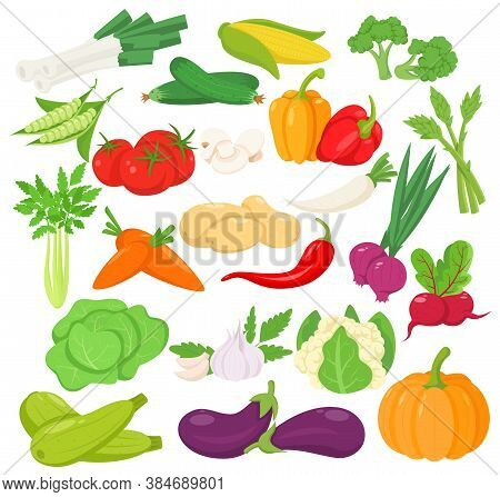 Vector Vegetables Icons Set In Cartoon Style. Collection Farm Product For Design Vegan Shops Or Mark