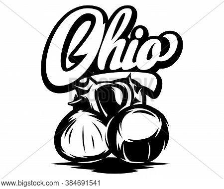 Ohio Calligraphic Inscription With Chestnut. Black Vector Illustration.