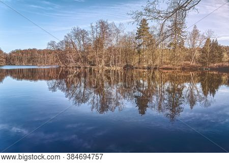 Autumn Trees Are Reflected In A Calm Lake