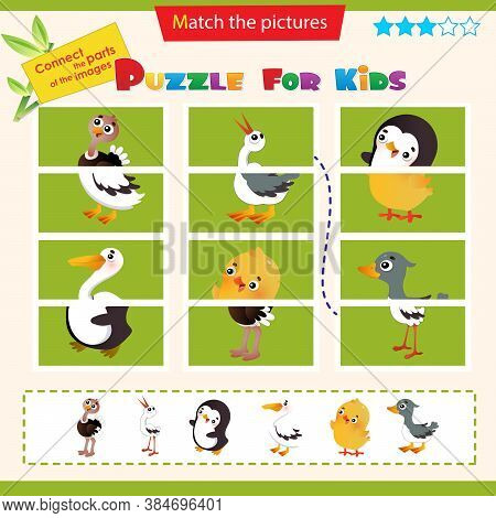 Matching Game For Children. Puzzle For Kids. Ostrich, Stork, Chick, Gosling, Penguin, Pelican.
