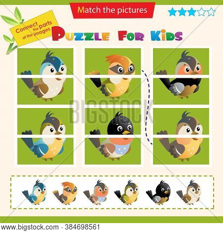 Matching Game For Children. Puzzle For Kids. Bird. Sparrow, Titmouse, Chickadee, Thrush, Nightingale
