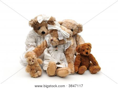 shot of a family of bears on white poster