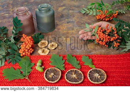 Mockup With Warm Red Scarf, Rowan, Dried Apples, Oranges, Candlesticks, Oak Leaves And Red Rowan In