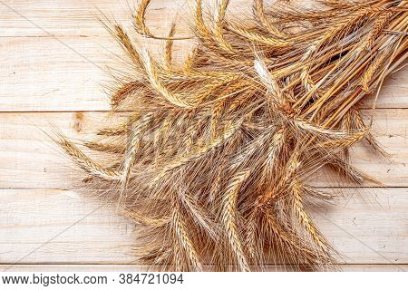 Spike View. Whole, Barley, Harvest Wheat Sprouts. Wheat Grain Ear Or Rye Spike Plant On Wooden Textu