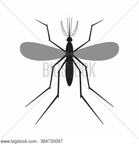 Mosquito Icon Isolated. Black Silhouette Of Mosquito. Vector Illustration. Mosquito Insect In Flat D