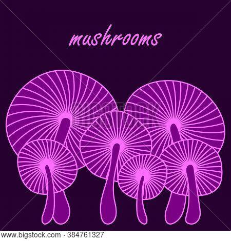 Neon Mushrooms, Space For Text . Fantastic Hallucinogenic Mushrooms. Vector Illustration For Poster,