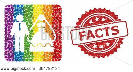 Bride And Groom Collage Icon Of Circle Elements In Different Sizes And Rainbow Color Hues, And Facts