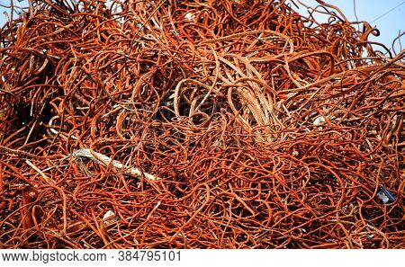 Huge Pile Of Rebar Is Stacked For Recycling.  Metal Is Rusty And Twisted.