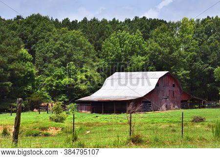Summer Day On Arkansas Farm