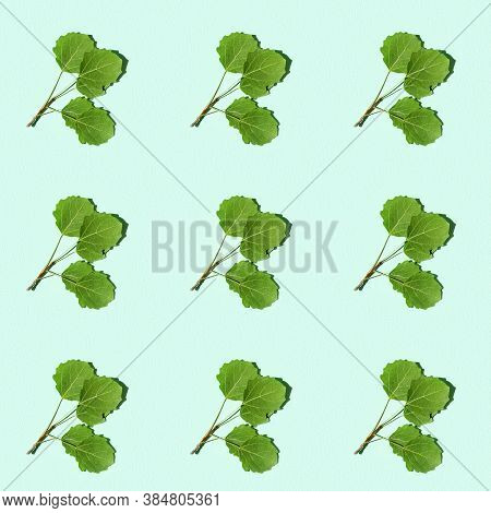 Seamless Regular Creative Pattern With Green Twig With Aspen Leaves. Minimal Natural Plant Branch Wi