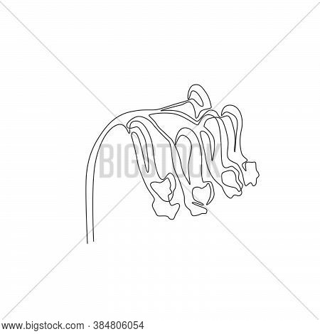 Single One Line Drawing Of Beauty Fresh Corydalis For Garden Logo. Decorative Perennial Herbaceous F