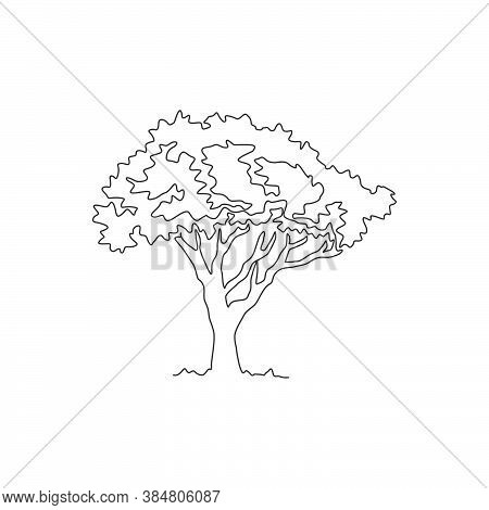 Single Continuous Line Drawing Beautiful Marula Tree For Home Decor Wall Art Poster Print. Decorativ