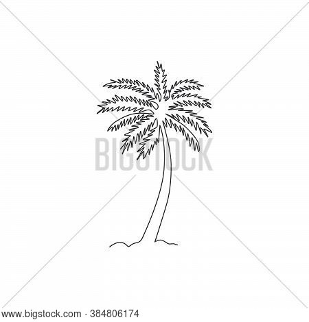 One Continuous Line Drawing Of Cocos Nucifera. Decorative Coconut Palm Tree Concept For Plantation C