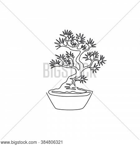 Single One Line Drawing Beauty And Exotic Miniature Bonsai Tree For Home Wall Art Decor Poster Print