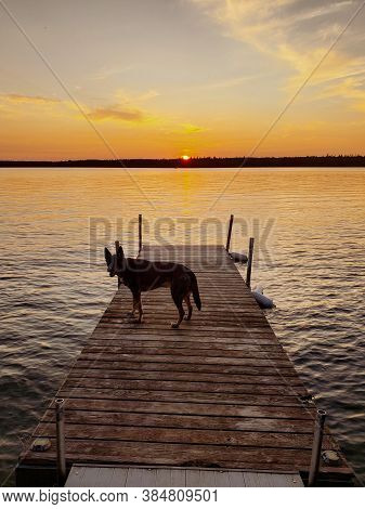 Sunset Over A Dock With A Dog On It On Child's Lake In Duck Mountain Provincial Park, Manitoba, Cana