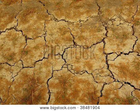 an arid land